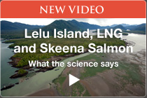 The Science on Lelu Island, LNG and Wild Salmon